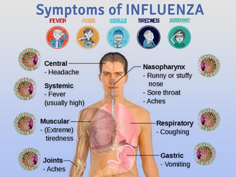Adult stomach flu