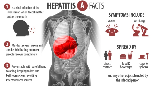 What Foods Can You Get Hepatitis A From